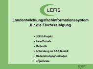 lefis - DVW