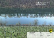 mitteilungen 5/13 - Gemeinde Eglisau