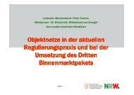 Objektnetze in der aktuellen Regulierungspraxis und bei der ...