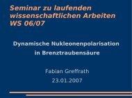 Seminar zu laufenden wissenschaftlichen Arbeiten WS 06/07