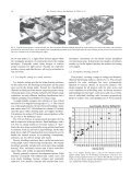 The solar envelope: its meaning for energy and buildings - Page 4