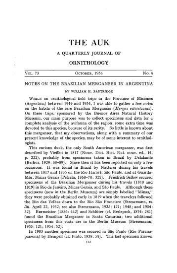 Download pdf 1.2MB - FAUNA Paraguay