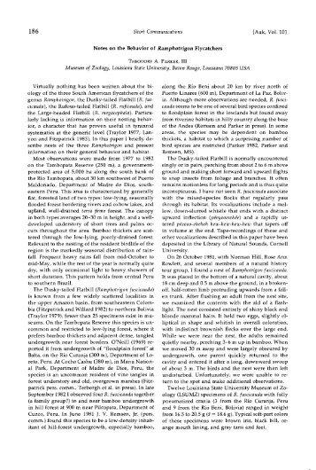 Notes on the Behavior of Ramphotrigon ... - FAUNA Paraguay