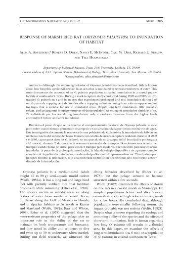 response of marsh rice rat (oryzomys palustris) to ... - BioOne
