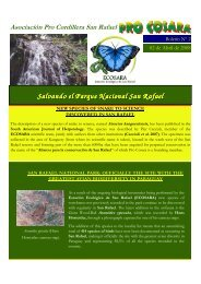 ECOSARA Bulletin Vol 2 March 2008 English - FAUNA Paraguay