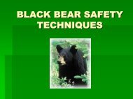 BLACK BEAR SAFETY TECHNIQUES - Fauquier County