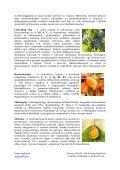Az egészség mindenkinek fontos . Szervezetünk ... - Favora-Info Kft. - Page 3