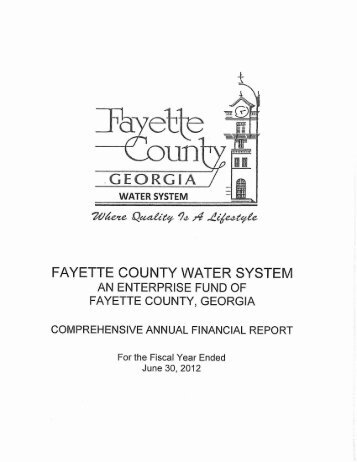 Complete Report - Fayette County Government