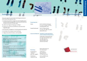 Bioingenieurwesen - Fakultät 06 - Hochschule München