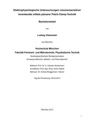 Download - Fakultät 06 - Hochschule München