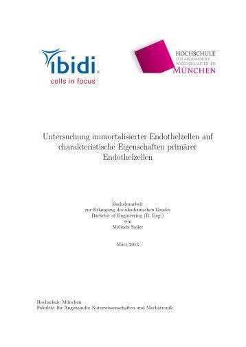 Untersuchung immortalisierter Endothelzellen auf charakteristische ...