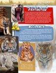 Le Tigre - Site Junior - Fondation Brigitte Bardot - Page 5