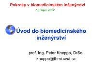 Úvod do biomedicínského inženýrství - FBMI