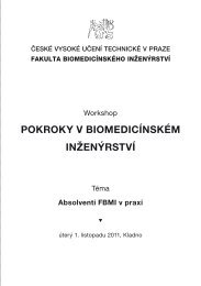 Program workshopu. - FBMI