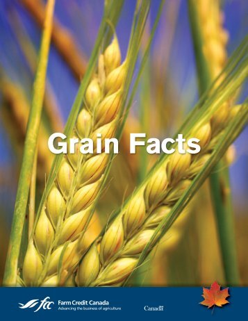 Grain Facts - FCC-FAC
