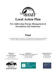 Action Plan - FCM