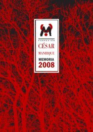 Memoria 2008 (1/2) - Fundación César Manrique