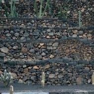 Jardín de Cactus II - Fundación César Manrique