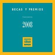 Bases del programa de becas y premios 2008 - Fundación César ...