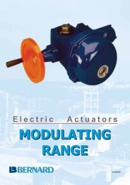 Electric Actuators - Fluid Control Services