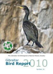 2010 (No 10) - Gibraltar Ornithological & Natural History Society