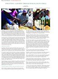 a journey through sensual south africa - Black Tie Magazine