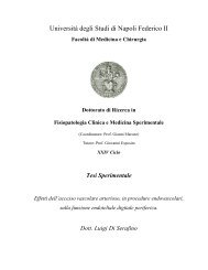 PDF - FedOA - Università degli Studi di Napoli Federico II