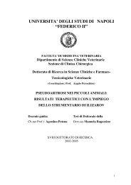 pseudoartrosi vitali - FedOA