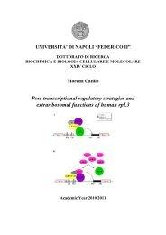 Post-transcriptional regulatory strategies and ... - FedOA