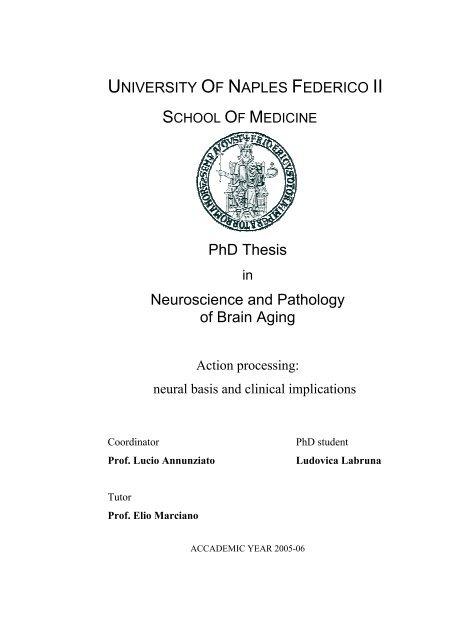 Thesis neuroscience custom letter writer site gb