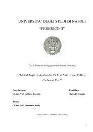 """UNIVERSITA' DEGLI STUDI DI NAPOLI """"FEDERICO II"""" - FedOA"""