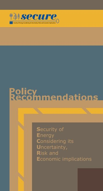 SECURE Policy Recommendations - Feem-project.net