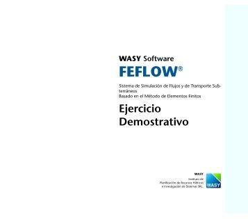 Ejercicio Demostrativo - FEFlow
