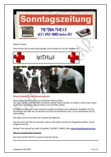 Homöopathische Notfallapotheke für den Hund