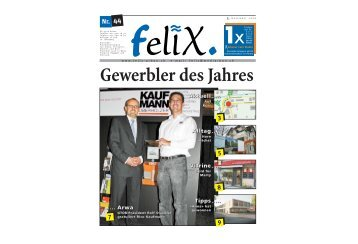 felix 05.12.2008 - Mediarbon - felix