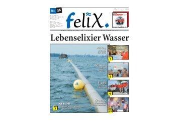 felix 10.10.2008 - Mediarbon - felix