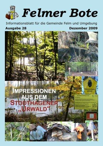 Ausgabe 28 im pdf-Format - Felmer Bote
