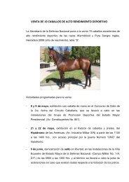 venta de 19 caballos de alto rendimiento deportivo - Secretaría de la ...