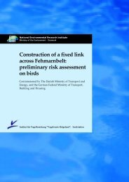 preliminary risk assessment on birds - BMVBS