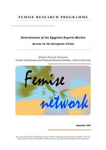 Determinants of the Egyptian Exports Market Access to the ... - Femise