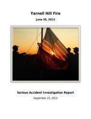 Relatório do Acidente ocorrido no Incêndio Florestal de Yarnel Hill