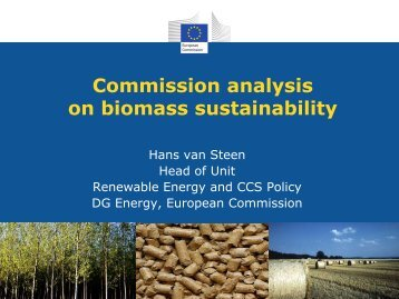 Commission analysis on biomass sustainability - Fern