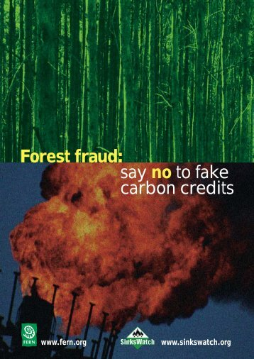Forest fraud: say no to fake carbon credits - Fern