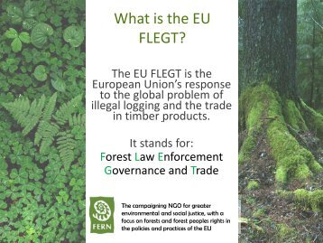 What is EU FLEGT.pdf - Fern