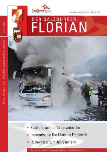 Florian 01/2013