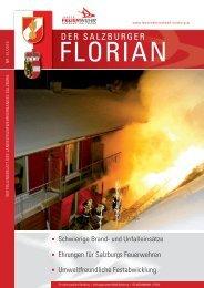 Florian 01/2010