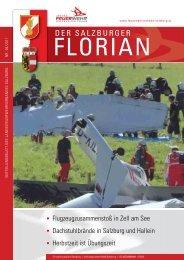 Florian 06/2011
