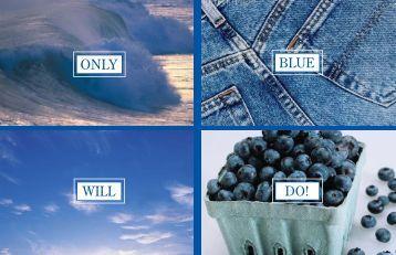BLUE WILL - National FFA Organization