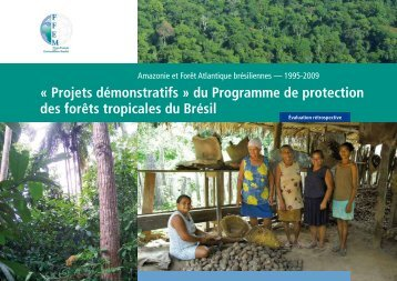 Amazonie et Forêt Atlantique du Brésil - FFEM