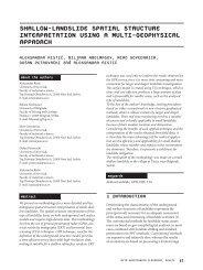 Shallow-landslide spatial structure interpretation using a multi ...